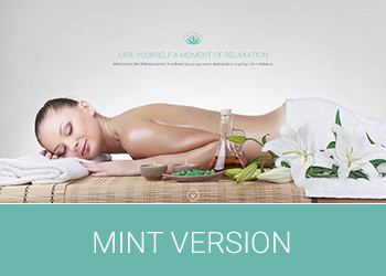 Wellness Center Landing Page Mint